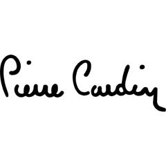 pierre-cardin